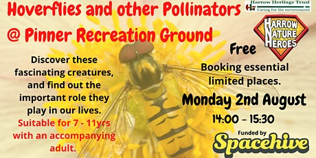 Hoverflies and other pollinators tickets