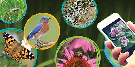 BioBlitz the Block with Toronto and Region Conservation Authority tickets