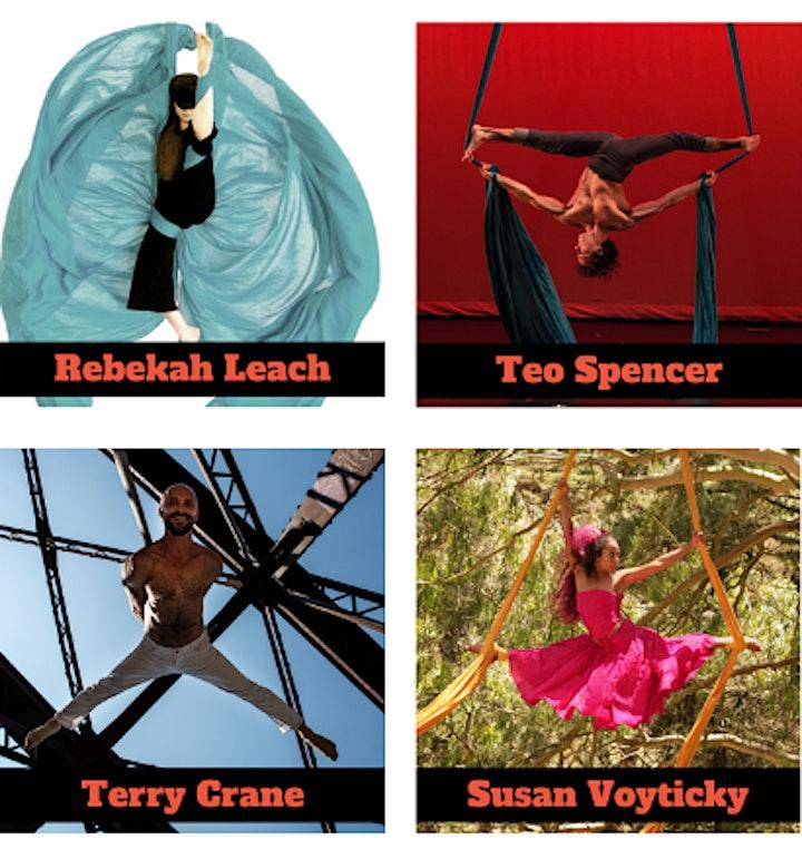 Virtual Performance Showcase: Aerial Dance Festival 2021 image