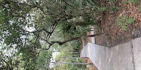 Artsy Retreat Florida! 3 Nights! Discover Beauty Through  Arts  &  Nature tickets