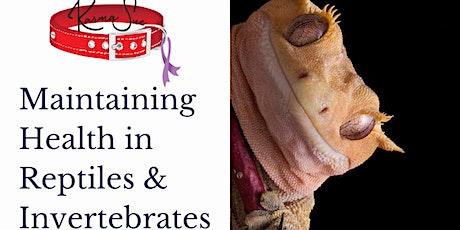 Maintaining Health in Reptiles & Invertebrates; KarmaSue Education Workshop tickets