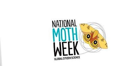 Family Moth Night tickets