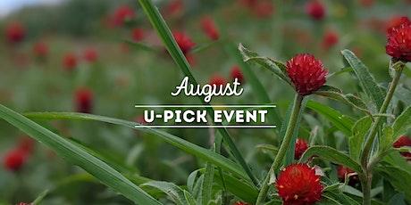 August Upick tickets