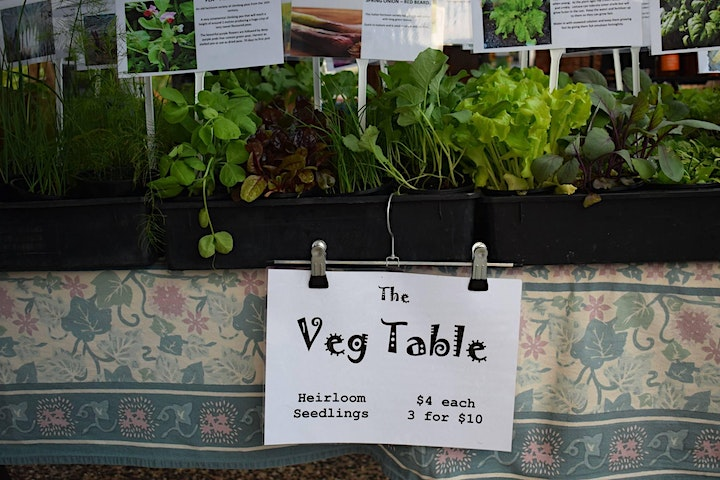 Seasonal Heirloom Vegetables - September Connect and Learn image