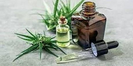 Vet nurses and Medicinal Cannabis-1CPD tickets