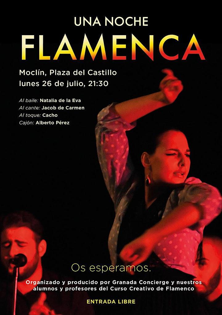 Una Noche Flamenca image