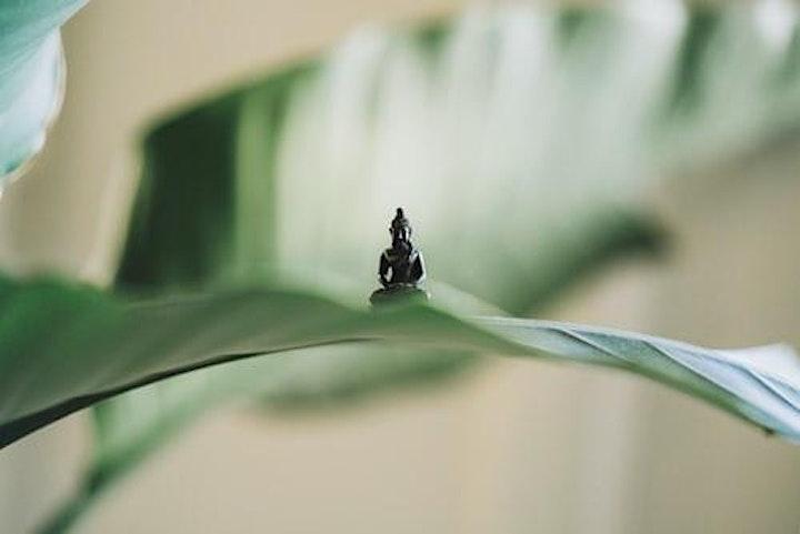 Image pour Initiation Philosophie et Spiritualité du Yoga