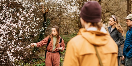 Infused Oils and Balms Foraging Workshop - walk and materials incl. tickets