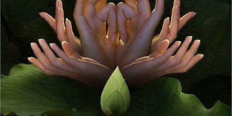 WOMENS CIRCLE GATHERING ~THE NOURISHED WOMB tickets
