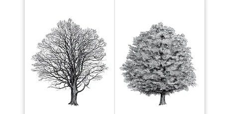 The Architecture of Trees II (Family Program) tickets