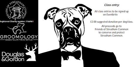 Streatham Common Fun Dog Show 2021 tickets