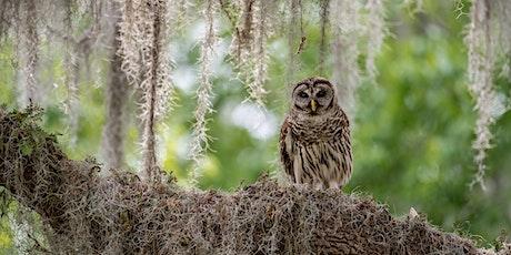 Owl Cast Café tickets