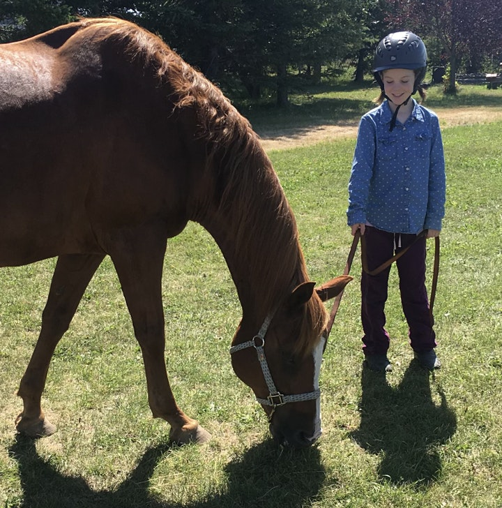 Finding Your Light - kids equine assisted learning - 2 day program image