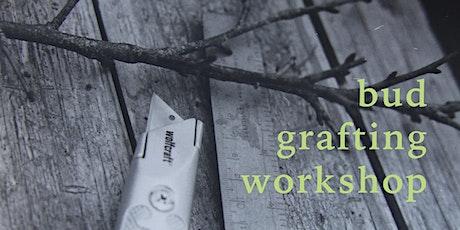 Bud Grafting Workshop with Appletreeman tickets