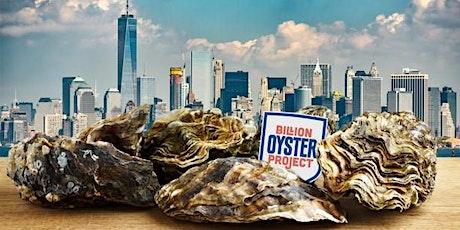 NYWEA Metropolitan Chapter: Billion Oyster Project Volunteer Day tickets