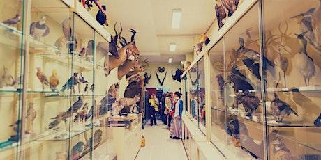Fete de la science   Université de Rennes 1 Galerie de Zoologie billets