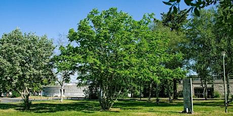Fete de la science  - Service culturel Univ. de Rennes 1- Arboretum decouv. billets