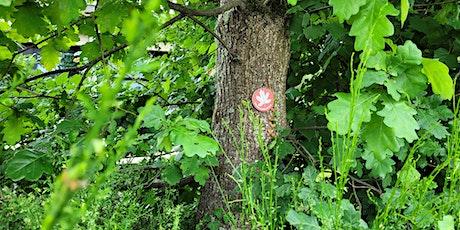 Fete de la science  - Service culturel Univ. de Rennes 1 - Breizh Arboretum billets