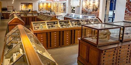 Fete de la science   Université de Rennes 1 Musée de Géologie billets
