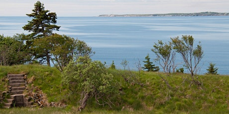 Discover McNabs Island: South End Heritage Tour -  August 15, 2021,11:00 AM tickets