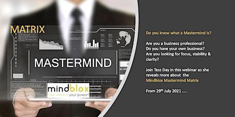 Webinar - Introducing the Mindblox Mastermind Matrix tickets