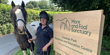 Open Day at the Mare and Foal Sanctuary - Coombe Park tickets