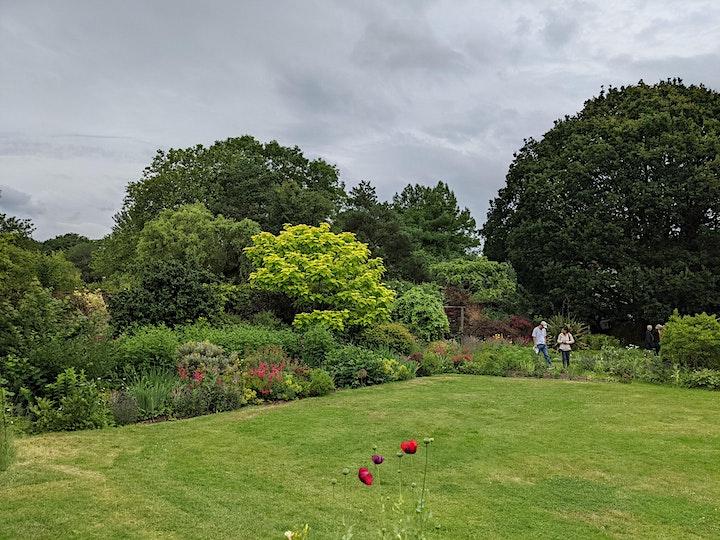 Bell House Open Garden image