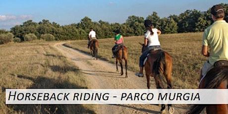 Horseback riding - parco murgia tickets