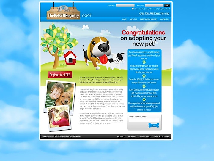 Everything you might know about web design services image