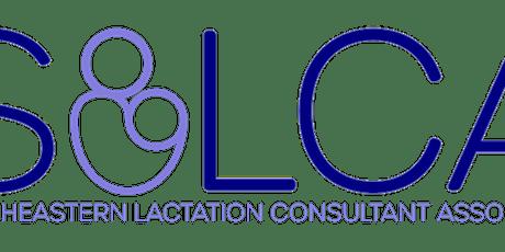SELCA Virtual  Breastfeeding Celebration & Quarterly Meeting-August 2021 tickets