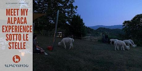 Meet My Alpaca: the Experience sotto le stelle biglietti