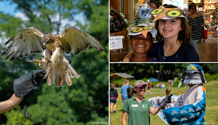 Audubon Raptor Weekend 2021 image