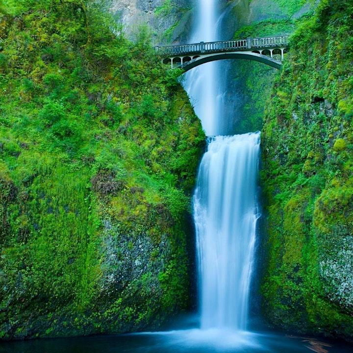 In-Person Tour: Wine & Waterfalls, Oregon image