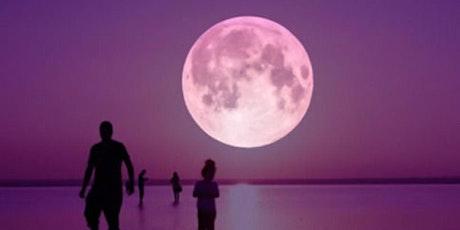 ✨Wild Women's  August New Moon Circle ✨ tickets