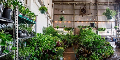 Perth - Huge Indoor Plant Warehouse Sale - Zoo Party! tickets