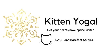 Kitten Yoga Hour tickets