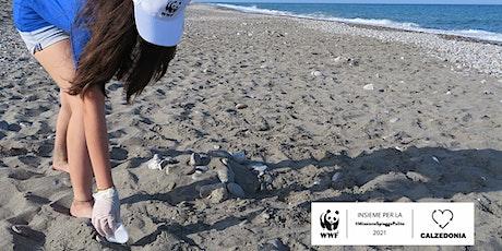 Tour #PlasticFree #MissioneSpiaggePulite - insieme a WWF YOUng biglietti