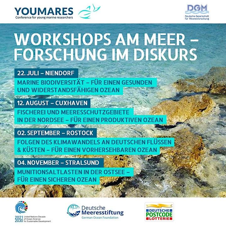 Workshops am Meer - Stralsund: Bild