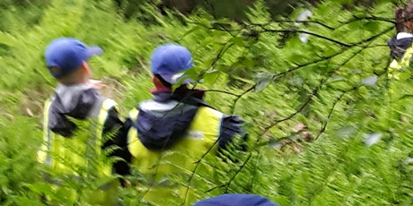 Family Forest Activity Day - Pittencrieff Park - Woodland adventure tickets