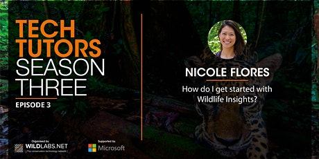 Tech Tutors: How do I get started with Wildlife Insights? tickets