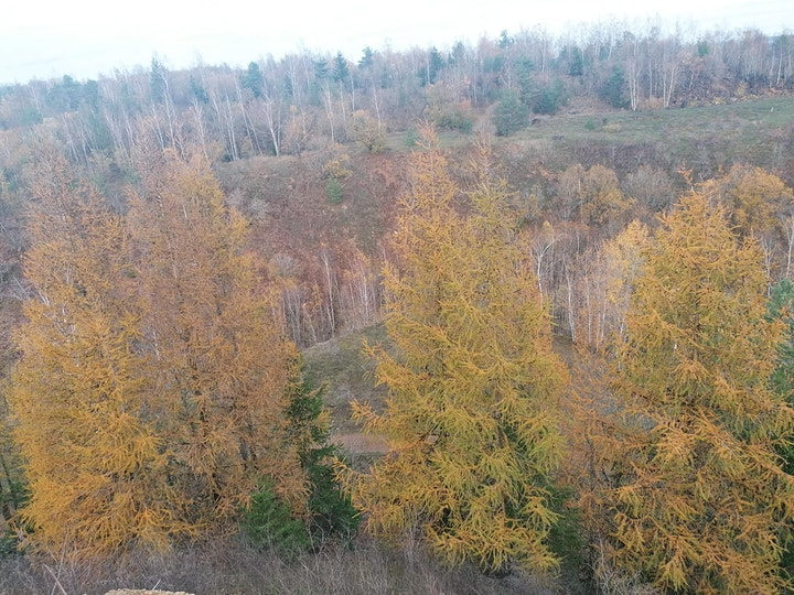 Hike in the Terres Rouges, Luxembourg image