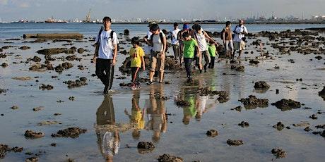 Intertidal Walk at Pulau Hantu tickets