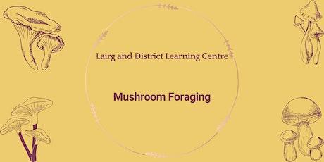 Mushroom Foraging tickets