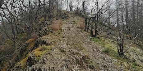 Lee Trail III - Hoscheid - Kautenbach tickets