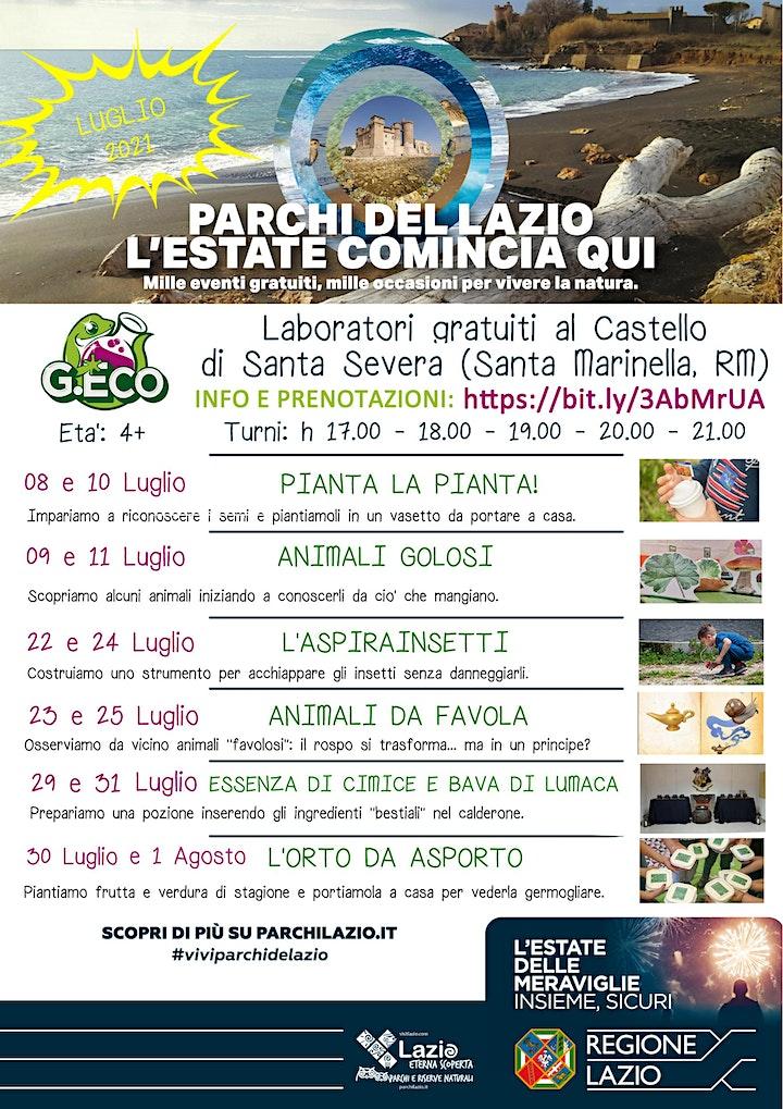 Immagine #ViviparchideLazio - Laboratori G.Eco al Castello di Santa Severa