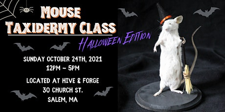 Mouse Taxidermy Class - Halloween Edition tickets