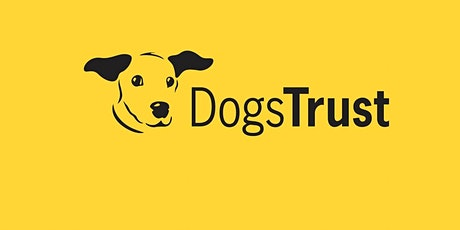 Keeping Your Dog Safe in the Summer with Dogs Trust tickets
