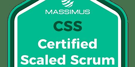 Treinamento CSS® - Certified Scaled Scrum - Online - Turma #01 ingressos