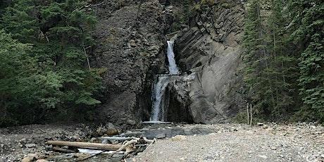 Winter wonderland beginner hike-  White Goat falls (Nordegg area) tickets