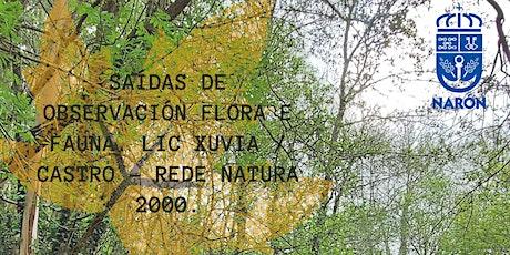 SAÍDAS DE OBSERVACIÓN FLORA E FAUNA. LIC XUVIA / CASTRO  REDE NATURA 2000. entradas